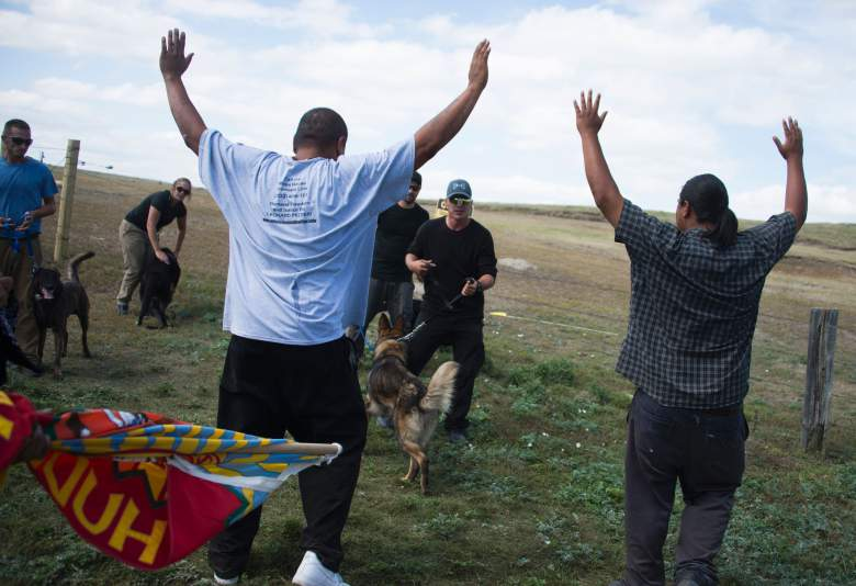 Native American protesters are confronted by a security team with dogs as they protest the Dakota Access oil pipeline near Cannonball, North Dakota, on September 3. (Getty)