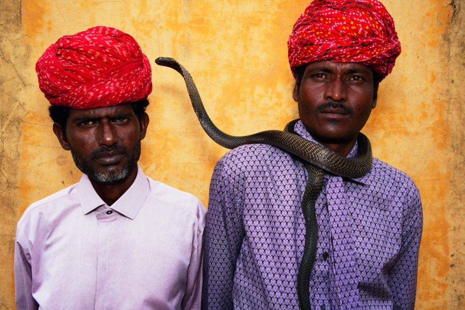 India, Brothers Harjinath and Kaliasnath Sapera © 2017 Alice Hawkins