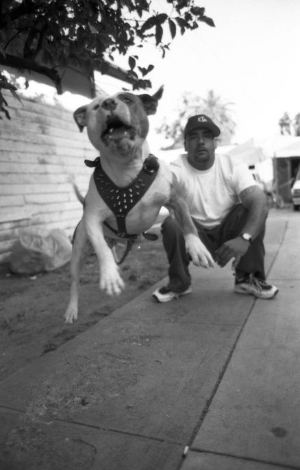 BETO & BOB'S DOG_copyright Gregory Bojorquez