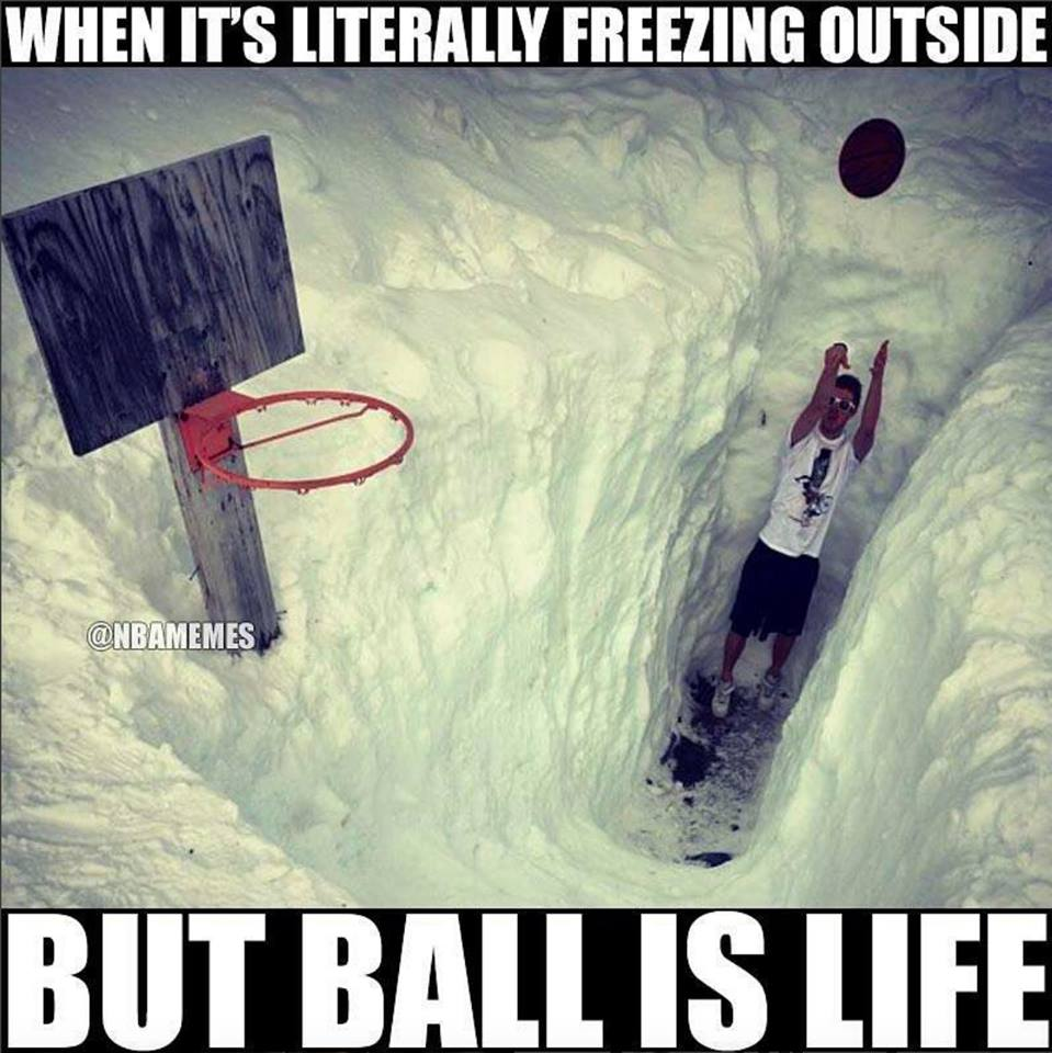 funny, funny memes, funny photos, funny pics, funny pictures, laughs, LOL, memes, today's funny photos, 1-10-18, snow ball is life meme