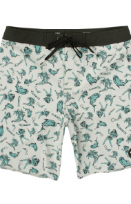VA Boardshorts by RVCA