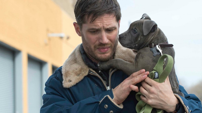 The Drop Tom Hardy Puppy