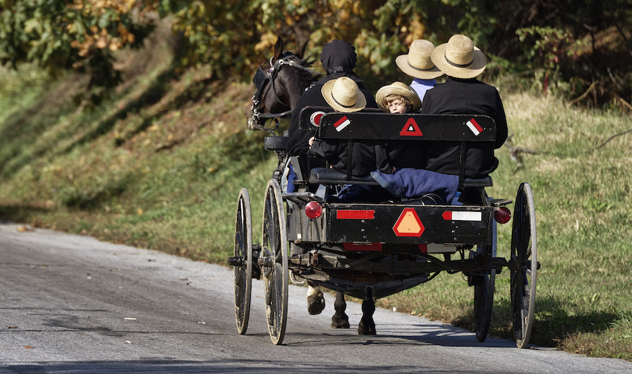 LANCASTER COUNTY, RONKS, PENNSYLVANIA, UNITED STATES - 2014/10/16: Amish family in horse drawn buggy. (Photo by John Greim/LightRocket via Getty Images)