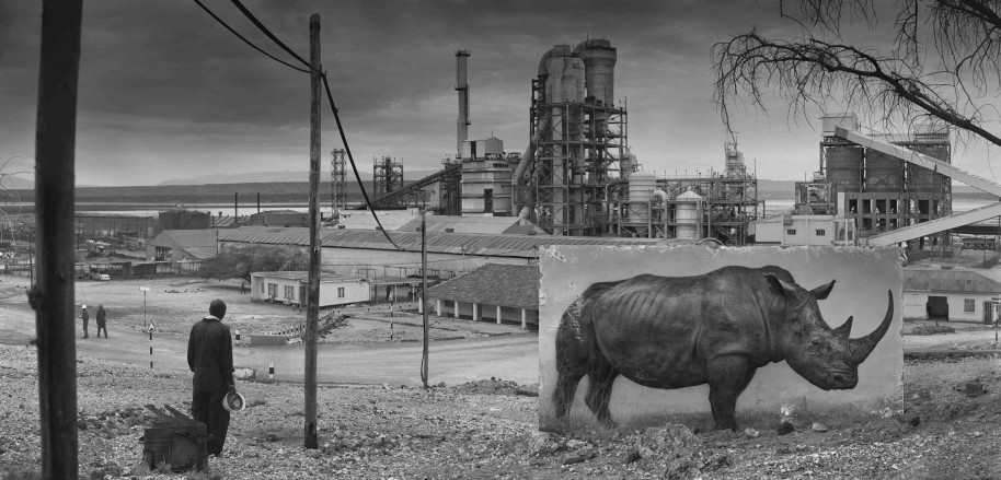 Factory with Rhino 2014