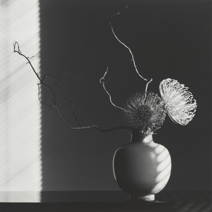 Robert Mapplethorpe American, 1946–1989. Flower Arrangement, 1986 Gelatin silver print Image: 49 x 49 cm (19 5/16 x 19 5/16 in.) Promised Gift of The Robert Mapplethorpe Foundation to the J. Paul Getty Trust and the Los Angeles County Museum of Art, L.2012.89.566