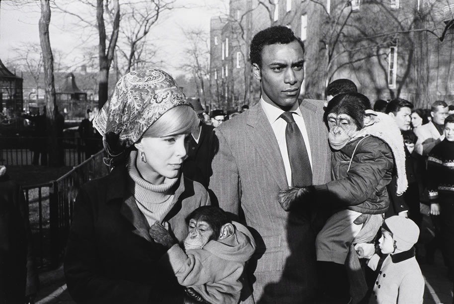 Garry Winogrand, (American, 1928-1984), Central Park Zoo, 1967 (printed later), 8 5/8 x 12 7/8 in., Currier Museum of Art, Manchester, New Hampshire. Museum Purchase: The Henry Melville Fuller Acquisition Fund, 2015.37. © The Estate of Garry Winogrand, courtesy Fraenkel Gallery, San Francisco.