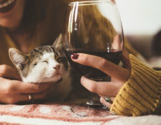 National Drink Wine With Your Cat Week Doesn't Have to Sell Us