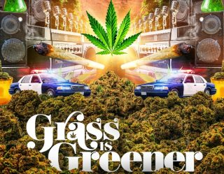 The 'Grass Is Greener' on Netflix in Time for 4/20 (And Other Marijuana Movies)