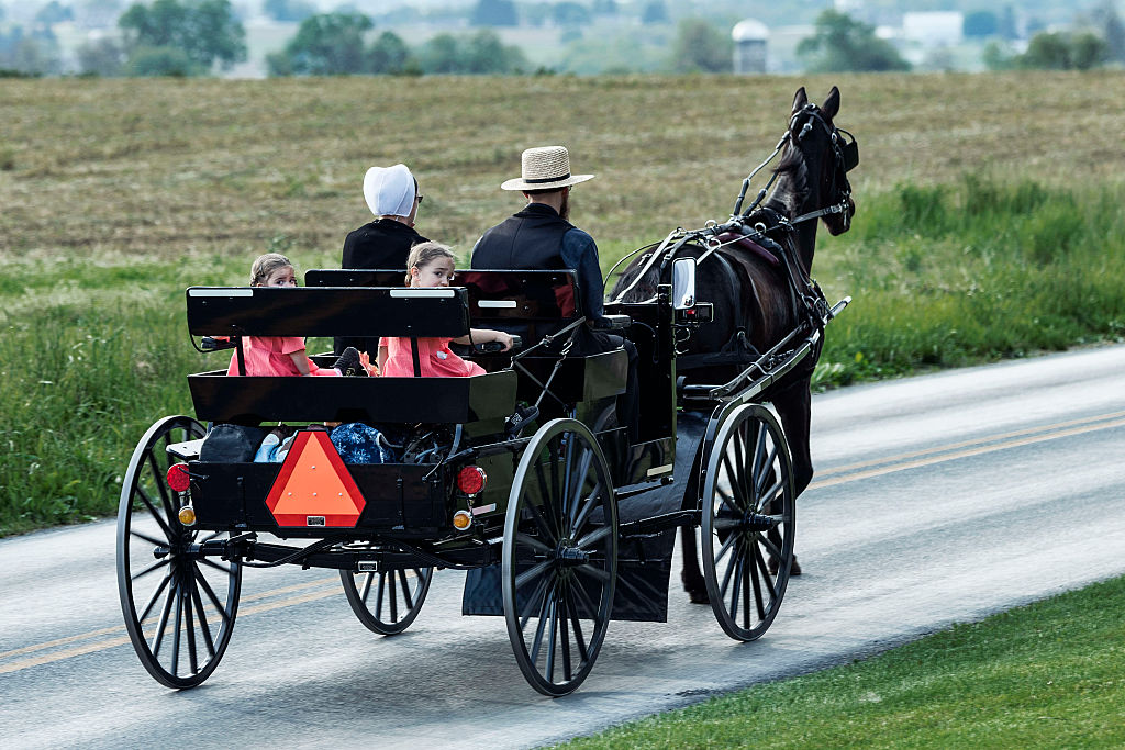 Genius Amish Entrepreneur Starts Horse-And-Buggy 'Amish Uber'