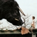 48. Beasts of the Southern Wild (2012)